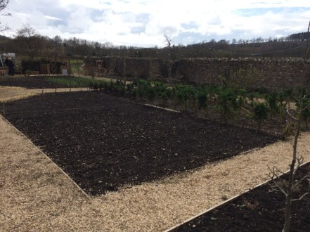 Kitchen garden ready for planting