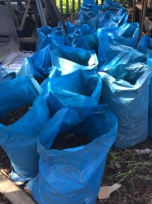 sacks of leaf mould made on site