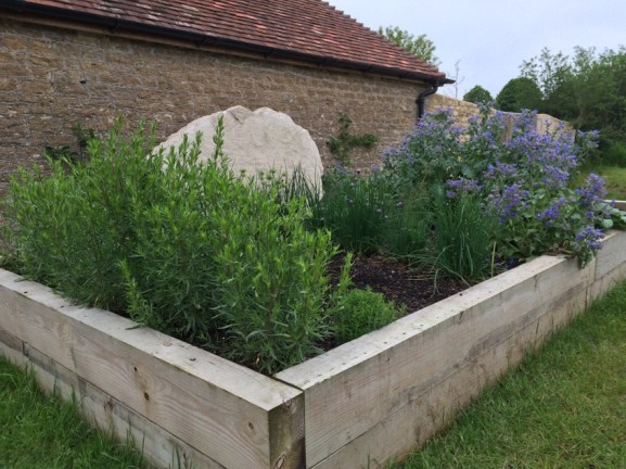 one of the herb beds