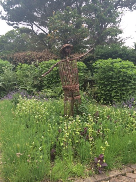 Male scarecrow in the small kitchen garden