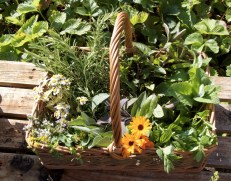 basket of potion herbs