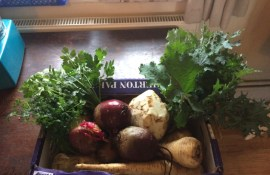 some of the veg for the meals