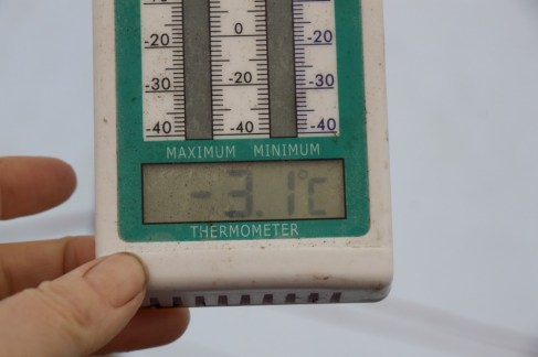 It was -7 or -8°C outside, -3.1°C inside the polytunnel