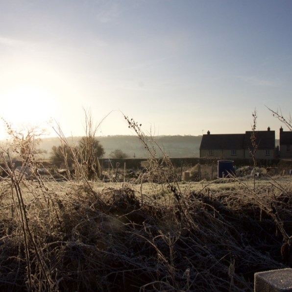 A cold morning at Bruton allotments
