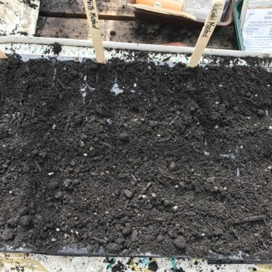 sprinkle compost on the top