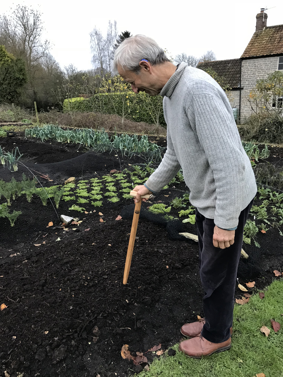 Top 10 FAQ - How to start No Dig Gardening in the UK