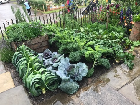 The watchmaker's vegetable patch