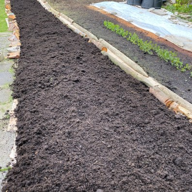 Bed 3 with fluffed up compost
