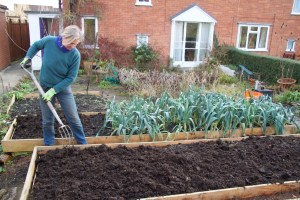 mulching with compost