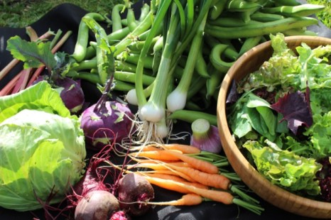 Some of the vegetables for a course lunch