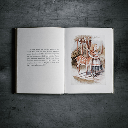 Curso Libros para niños: palabras e imágenes