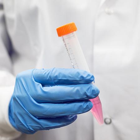 Unidad de Aprendizaje Bioquímica Veterinaria