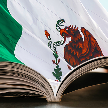 Curso Historia de México de homologación