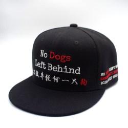 NDLB Baseball Cap