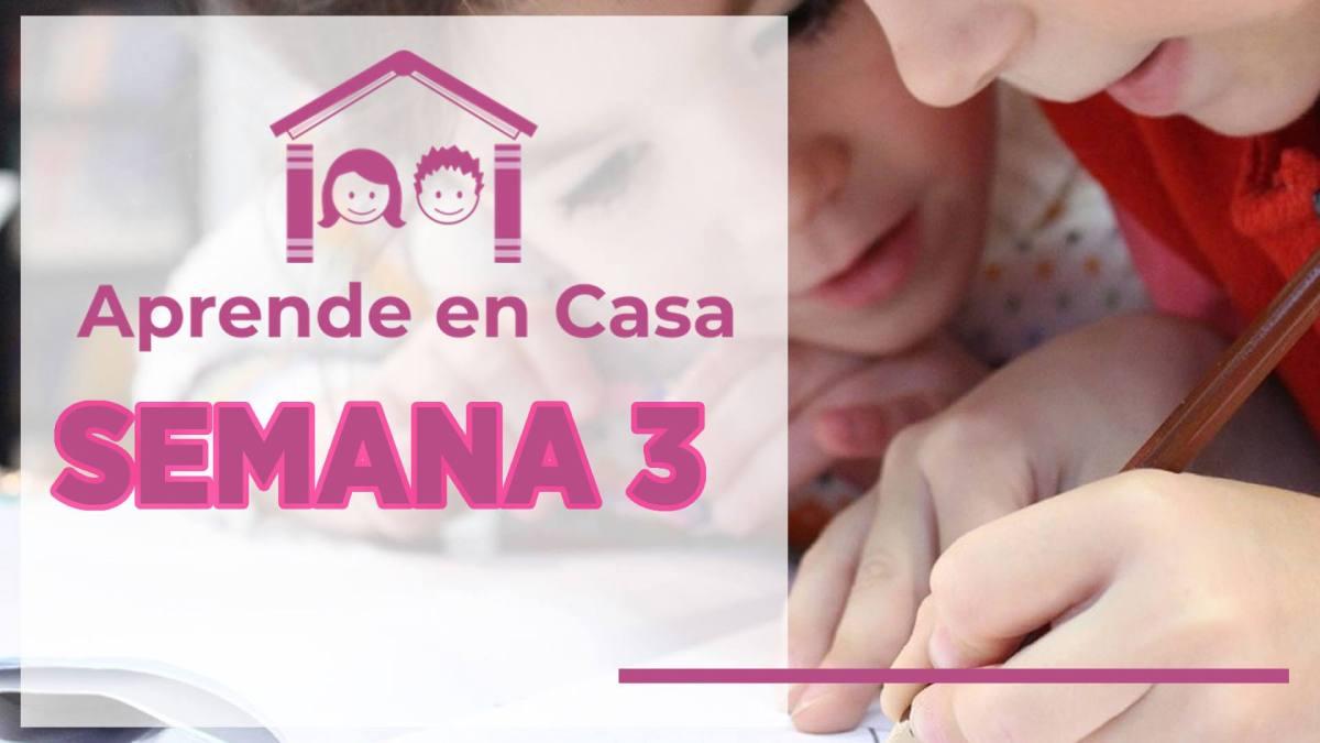 Resumen de la semana 3 de Aprende en Casa