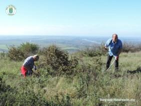 Finale der Pflegewoche des Landes Niederösterreich am Hundsheimer Berg | Foto: Berg- und-Naturwacht.org