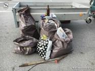 Umweltschutzaktion beim aufgelassenen ZIELPUNKT   Foto: NOE-Umweltwacht.org
