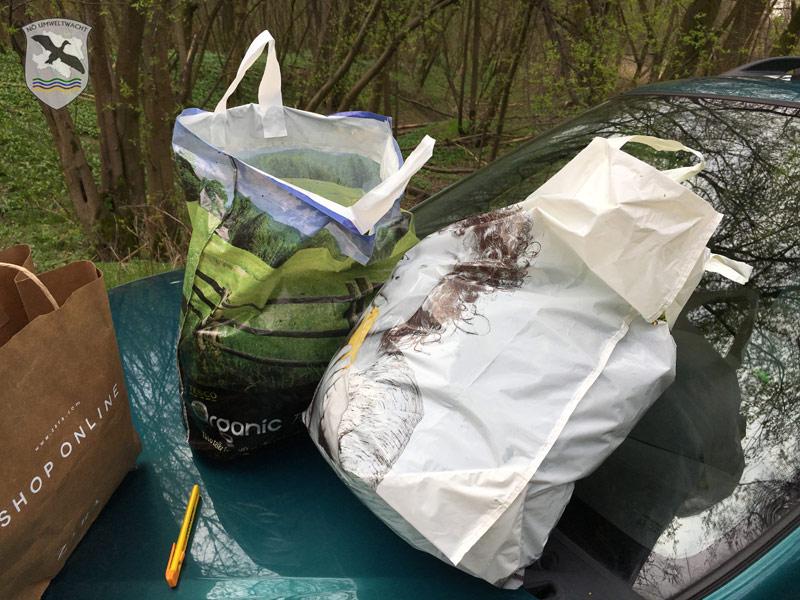 3 Bärlauchpflücker in Hainburg ertappt – Abstrafung an Ort und Stelle