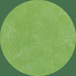 ZS 607 BRIGHT-GREEN – MENTA