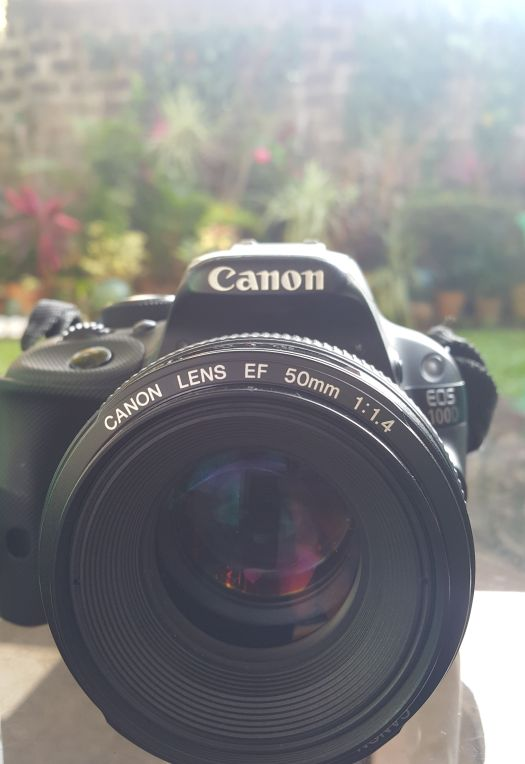 taking photos with a Canon