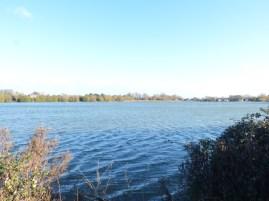 Ivy Lake