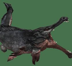 Slaughterfish