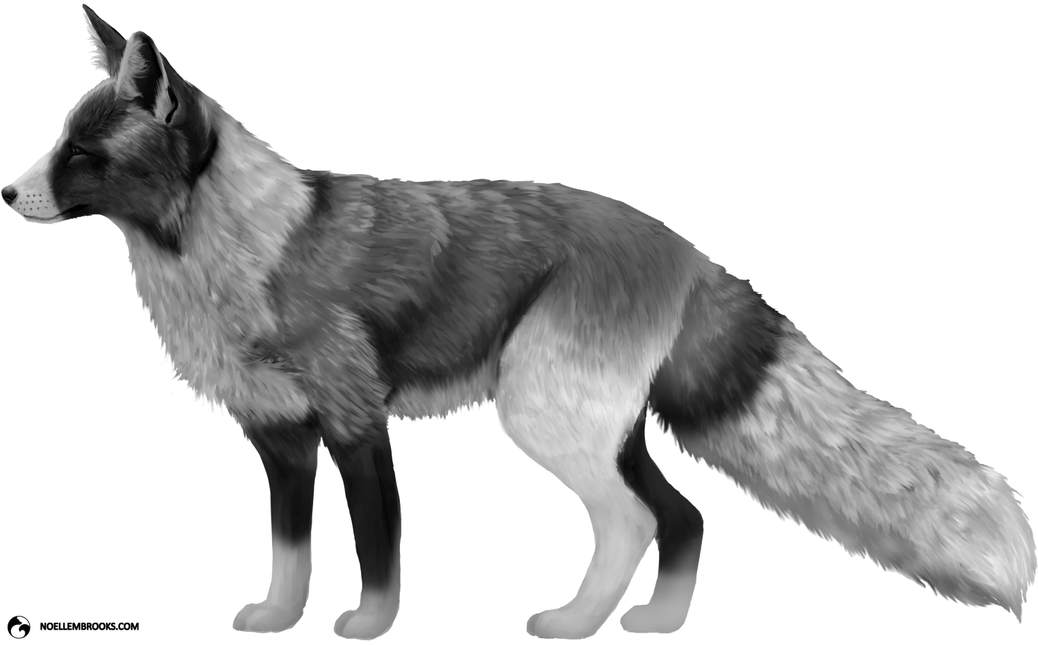 Piebald-Spotted Silver-Colored Red Fox