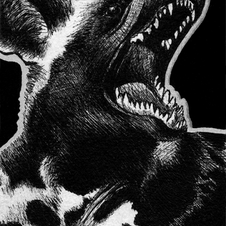 african wild dog, wild dog, wild dogs, yawning, roaring, mouth open, close-up, close up, lying down, ink, inks, pen, pens, ballpoint pen, ballpoint pens, realism, realistic, animal, animals, wildlife, nature, achromatic, black and white, black, white, grey, gray, noelle, noelle brooks, noellebrooks, noelle m brooks, noellembrooks, art, series, drawing, drawings, picture, pictures, illustration, illustrations, portrait, portraits