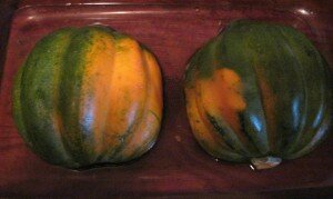Acorn Squash Faced Down