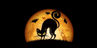 couverture-twitter-halloween-chat