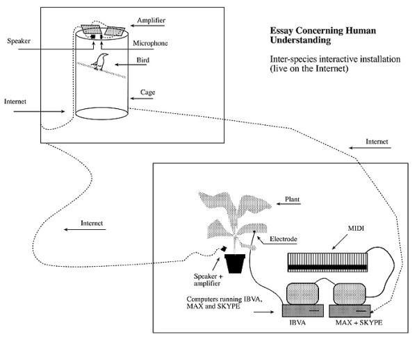 Kac-Concerning_human_understanding_1