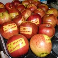Æbler med tryk