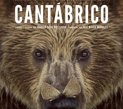 Cantabrico. Los dominios del oso pardo