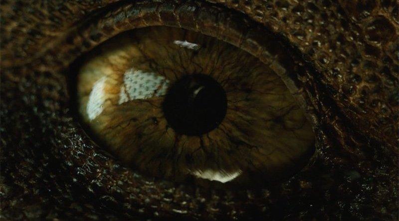 'Jurassic World: el reino caído': El Tyrannosaurus Rex despierta en el nuevo avance del tráiler