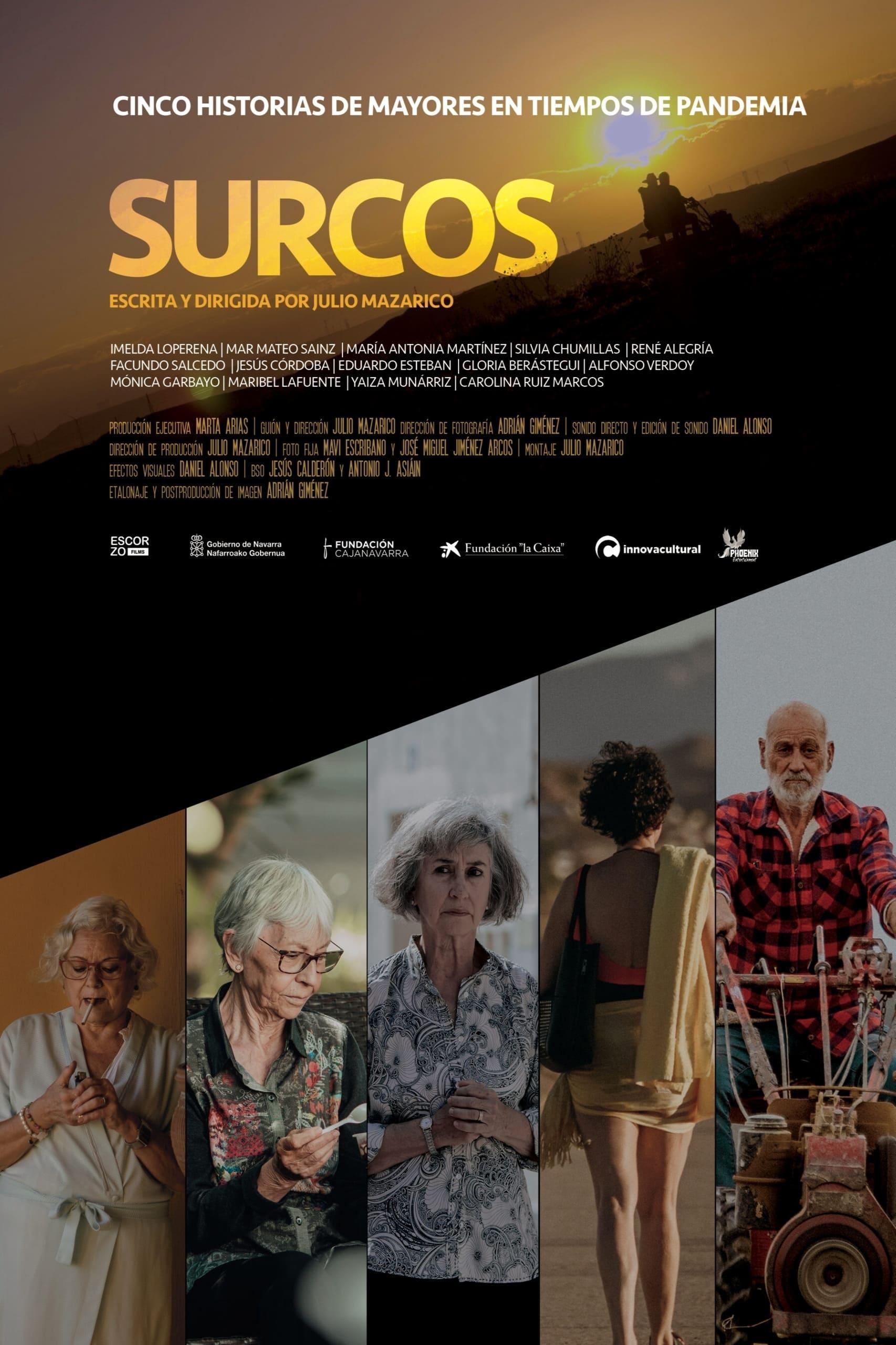 """Pósters de la película """"Surcos"""""""