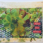 sedum photo transfer art || noexcusescrapbooking.com