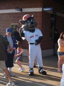 Rocky is the Rock Cats mascot. He was so good with children, before and during games. Not sure if a goat is going to work, but we'll see.