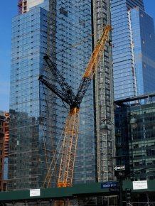 black and gold crane