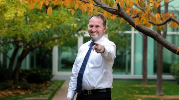 Barnaby Joyce Picture: Kym Smith