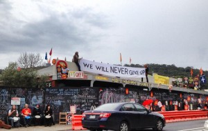 Roof protester. Pic Janine Watson