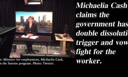 'We will fight for the worker' – Michaelia Cash threatens double dissolution: @Qldaah #ausvotes #qldpol #auspol
