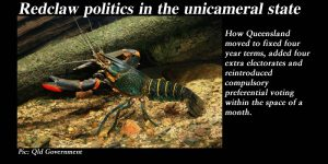 Redclaw politics in the unicameral state.