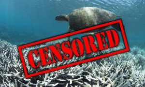 20160527-reef-censored-reefgate