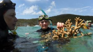 One Nation Senator Pauline Hanson listens to marine scientist Alison Jones a the Great Barrier Reef off Great Keppel Island, Queensland, Friday, Nov. 25, 2016. (AAP)