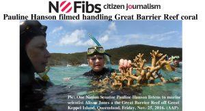 Pauline Hanson filmed handling Great Barrier Reef coral