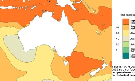 2016 hottest year on record globally, 4th warmest for Australia reports @takvera