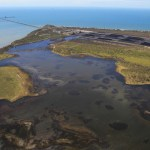 Caley Valley Wetland contaminated by coal from Abbot Point. Photo: Dean Sewell