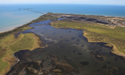 Adani's Abbot Point #coal contamination of Caley Valley #wetlands reports @takvera