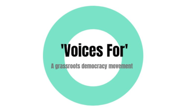 From Indi to #IndependentsDay: my #ActiveDemocracy journey