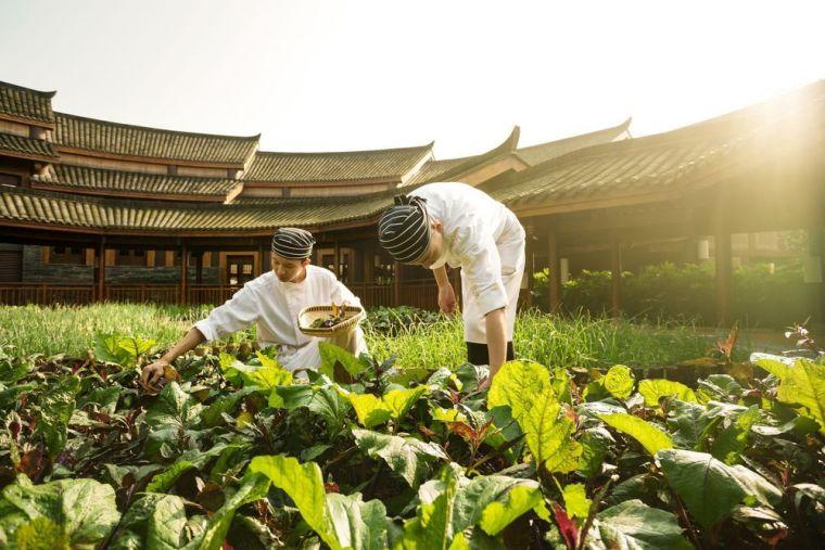 Six Senses Chengdu Garden